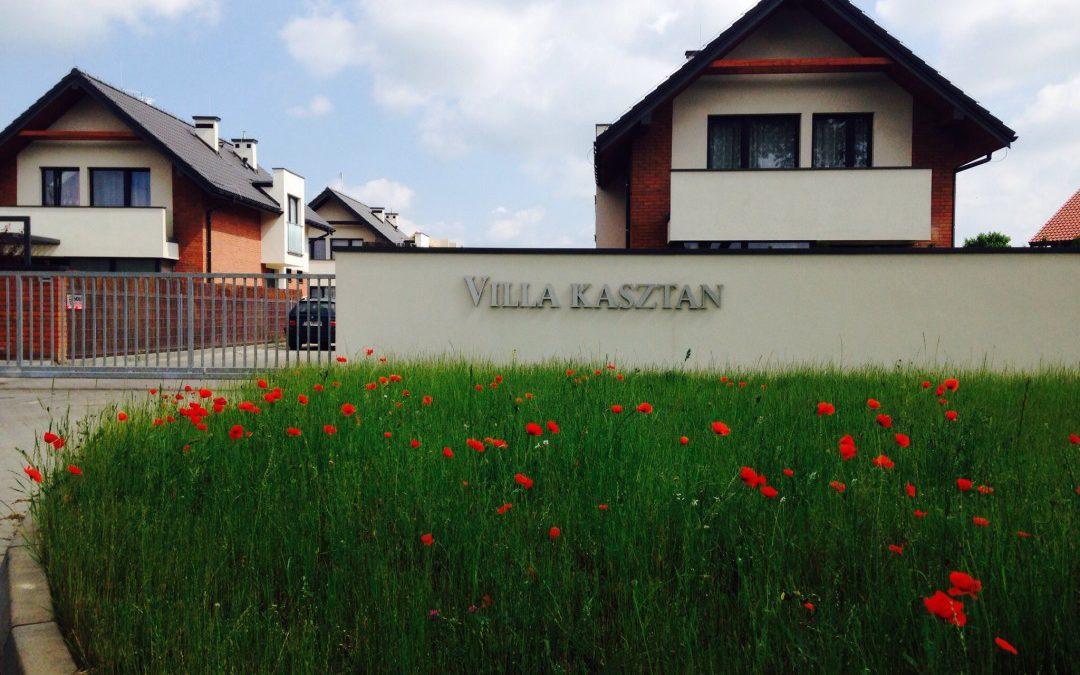 Zakwitły maki na Inwestycji Villa Kasztan